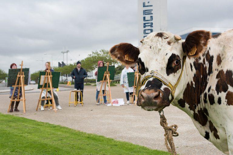 Une vache regarde l'objectif alors qu'elle se fait représenter par plusieurs artistes