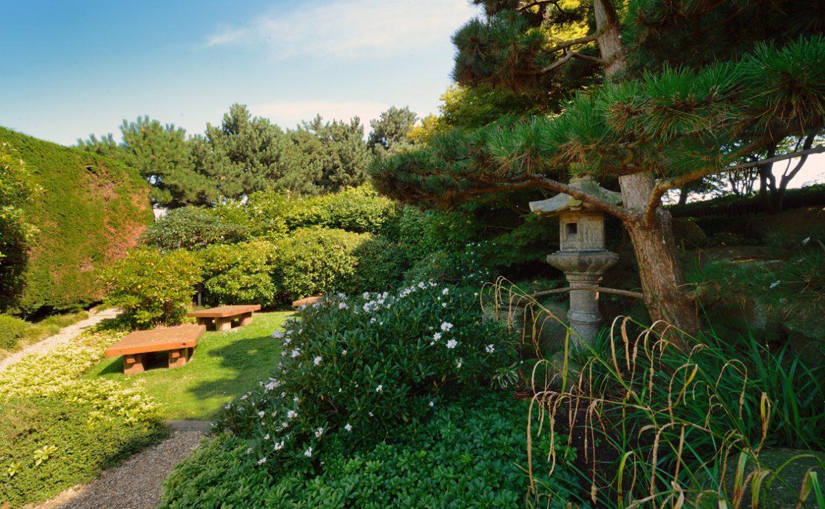 Lanterne en pierre, nature et détente dans le jardin japonais au Havre