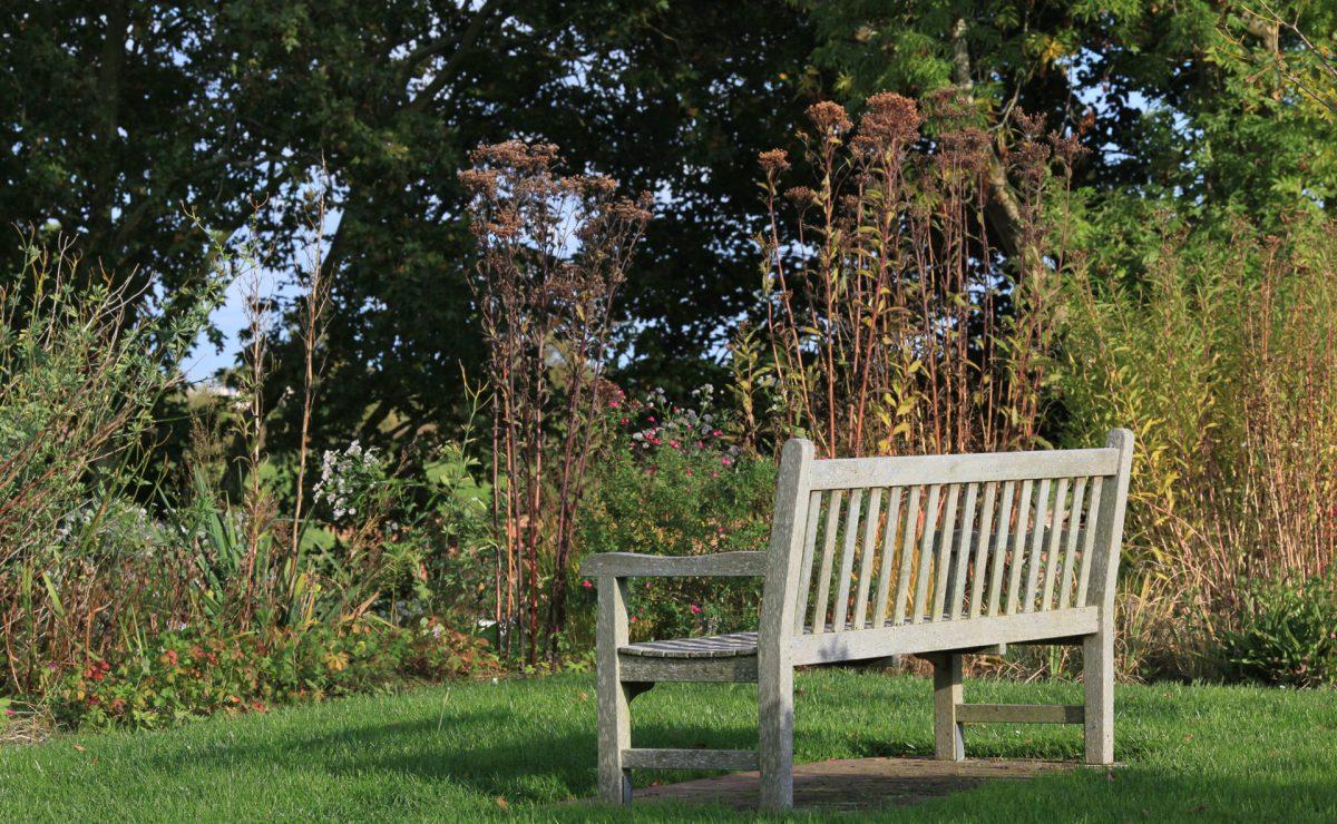 Un banc en bois entouré de verdure dans les Jardins Suspendus