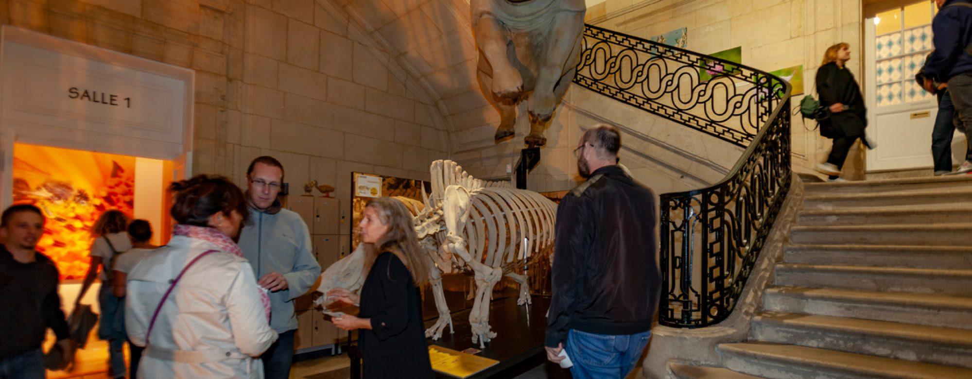 Les Nuits du Tourisme au Museum d'Histoire Naturelle